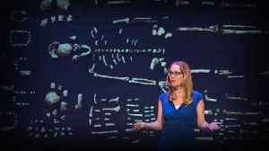 How a new species of ancestors is changing our theory of human evolution | Juliet Brophy [Video]