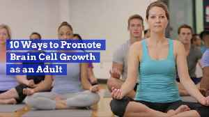 How To Keep Your Brain Cells Growing [Video]
