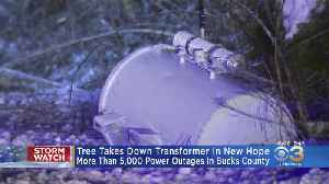 Heavy Snow Knocks Down Tree, Causing Power Outages [Video]