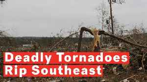 Deadly Tornadoes Rip Through Central Alabama [Video]