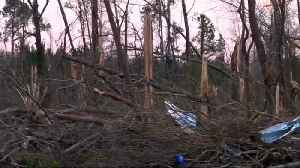 Survivor recalls Alabama tornado devastation [Video]