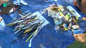 Sydney Snorkelers Tackling Plastic Pollution One Straw At A Time [Video]