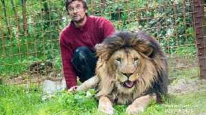 Czech man attacked and killed by lion he kept as pet [Video]