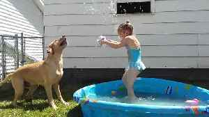 A Girl and her Dog have Summer Fun! [Video]