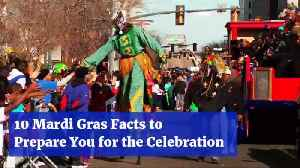 Preparing For Mardi Gras Fun [Video]