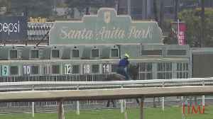 Santa Anita Racetrack Cancels Racing Indefinitely After Deaths of 21 Horses [Video]