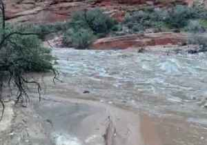 Floodwater Gushes Through Canyon After Heavy Rain in Utah [Video]