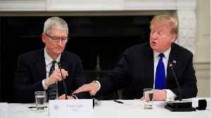 President Trump Called Apple's CEO 'Tim Apple' [Video]
