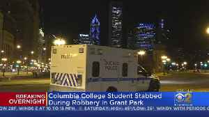 Columbia College Student Robbed, Stabbed In Grant Park [Video]