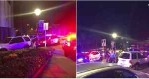 Wrong-way driver in custody after crashing with police car in Stuart [Video]