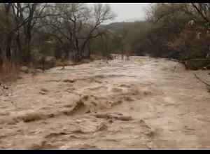 River Rages After Heavy Rains in Utah's Zion National Park [Video]