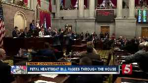 Tennessee House passes fetal heartbeat bill [Video]