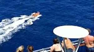Cruise Ship Passengers Cheer As They Watch Plane Crash Survivors Being Rescued At Sea [Video]