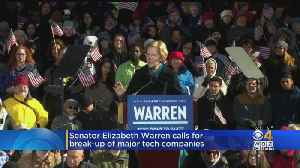 Elizabeth Warren's New Plan: Break Up Amazon, Google And Facebook [Video]