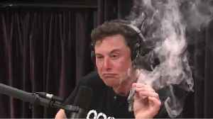 The Pentagon Is Reviewing Elon Musk's Security Clearance After Marijuana Toke [Video]