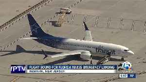 Flight bound for Florida makes emergency landing in New Jersey [Video]