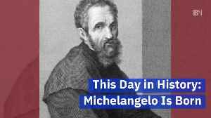 The Day Michelangelo Was Born [Video]