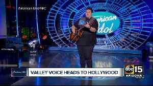 Is Arizona ready to produce another American Idol superstar? [Video]