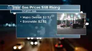 Gas prices continue to rise in metro Detroit [Video]