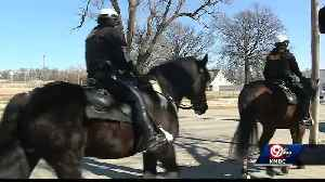 KCPD's Mounted Patrol preps for Big 12 Tournament, St. Patrick's Day parade [Video]
