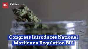 Here Is A New National Marijuana Regulation Bill [Video]