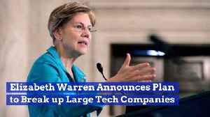 Elizabeth Warren Wants To Go After Big Tech Corporations [Video]