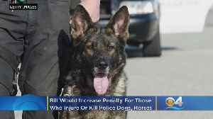 Florida Legislature Moves To Offer Added Protection To Police Dogs, Horses [Video]