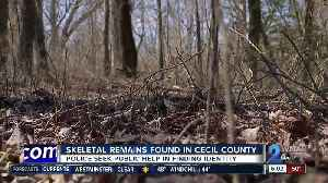 Skeletal remains found in Cecil County [Video]