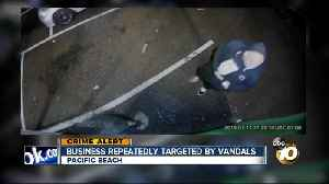 Pacific Beach business captures vandal on camera [Video]
