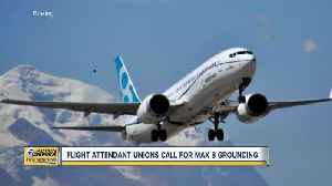 Flight attendant unions call for Max 8 grounding [Video]