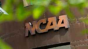 Could the NCAA Punish Specific Athletic Programs, Coaches Following FBI-Investigated Admissions Scandal? [Video]