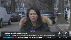 Human Remains Found In Queens [Video]