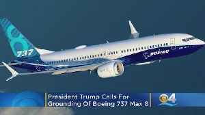 President Trump Calls For Grounding Of Boeing 737 Max 8 [Video]