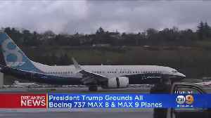 Trump Announces All Boeing 737 Max Planes Grounded 'Immediately' [Video]