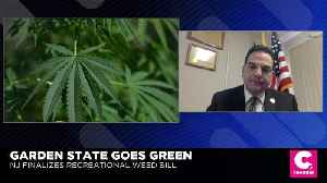 N.J. Sen. Scutari: New Yorkers Welcome After New Jersey Legalization [Video]
