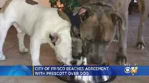 City Of Frisco Reaches Agreement With Dak Prescott Over One Of His Dogs [Video]