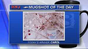 Mug shot of the day - 3/13/19 - Carol [Video]