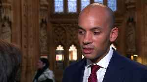 Umunna: Will keep pressing for People's Vote despite defeat [Video]