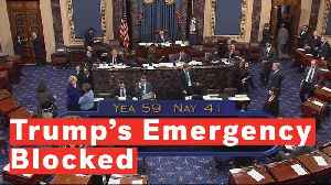 12 Republicans Side With Democrats In Voting To Block Trump's National Emergency Declaration [Video]