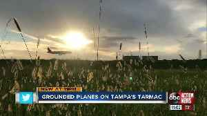 Tampa travelers sent scrambling after ground stop of 737 Max 8 planes [Video]
