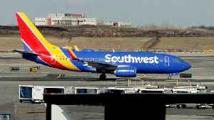 Southwest Shares Fall After Trump Grounds Boeing 737 Max Jets [Video]