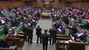 MPs Vote To Reject No-Deal Brexit [Video]