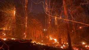 Report Says California's Thomas Fire Was Caused By Power Lines [Video]
