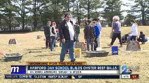 Students help bring oysters back to Chesapeake Bay [Video]