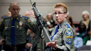 Court Rules Gun Manufacturer Can Be Sued Over Sandy Hook Shooting [Video]