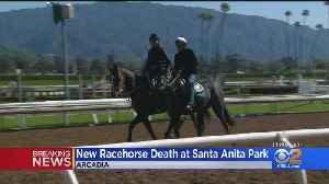 Horse Dies While At Santa Anita Racetrack, Marks 22nd Death Of The Season [Video]