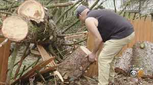 New Wind Storm Could Cause Repeat Round Of Power Outages, Downed Trees [Video]