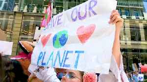 Students Around the World Organize March 15th Climate Walk-Outs to Demand Action Now [Video]