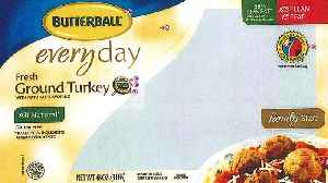 Butterball Recalls Nearly 80,000 Pounds of Turkey After Salmonella Cases [Video]