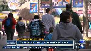 It's time to apply for summer jobs [Video]
